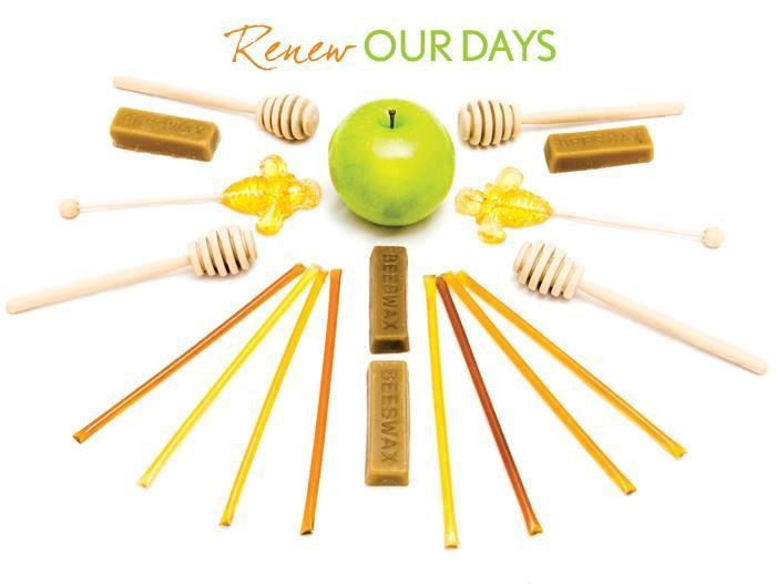 Renew Our Days RH Card