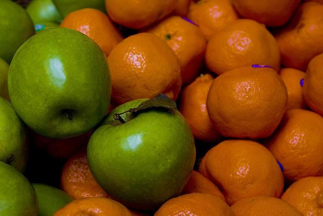 apple and orange photo