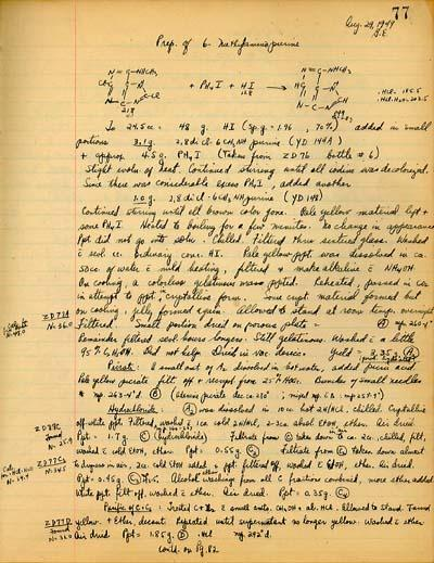 Excerpt From Gertrude Elion's Laboratory Notebook, 1949