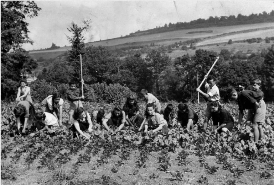 Workers tending the vegetable garden at Camp Kinder Ring